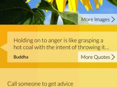 Mood Meter – building your emotional intelligence - Screenshot